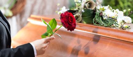 Rote Rose wird auf Holzsarg gelegt